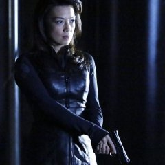 Agents-of-SHIELD-1x16-End-of-the-Beginning-15-8cf11fec6c0482796286803949cd2d24.jpg