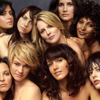 The L Word: Interrogation Tapes